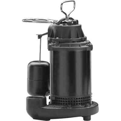 Wayne Water System 1/3 HP 115V Cast-Iron Submersible Sump Pump
