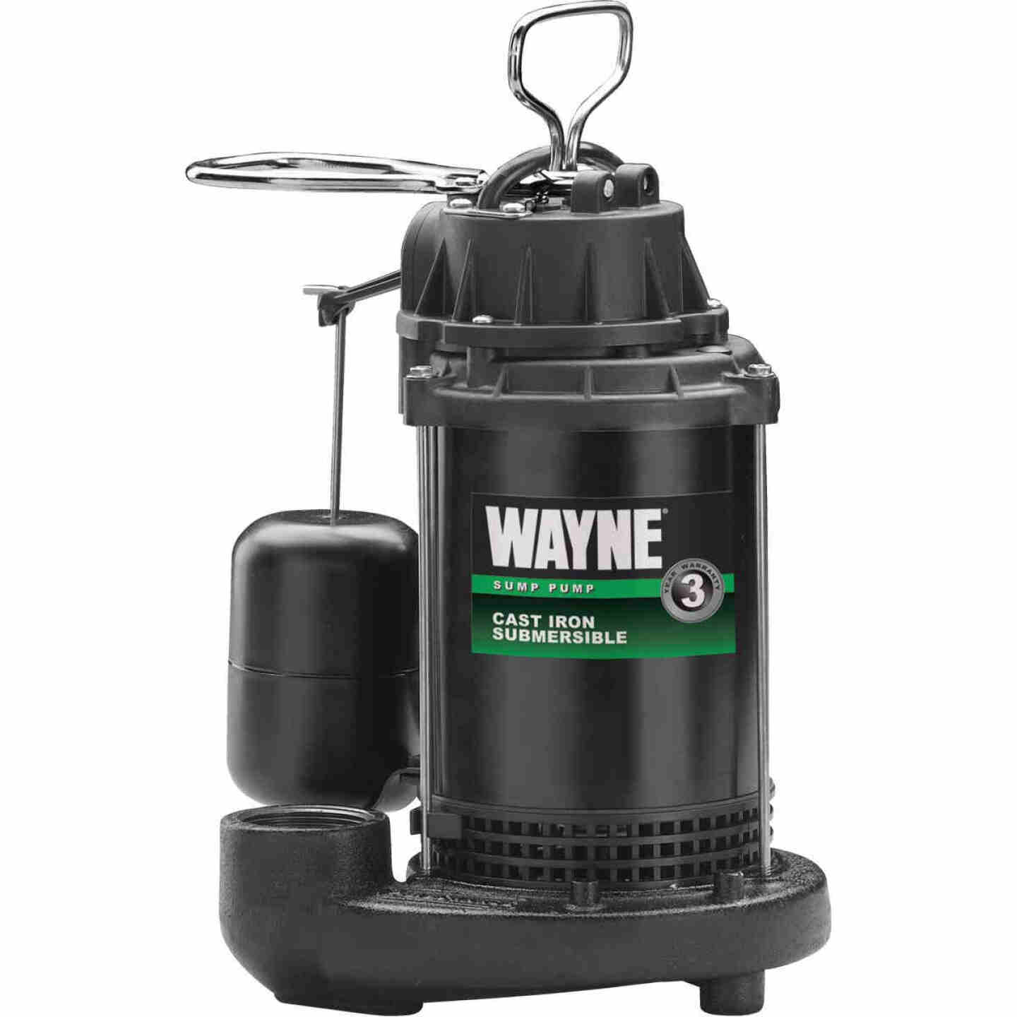 Wayne Water System 1/2 HP 115V Cast-Iron Submersible Sump Pump Image 1