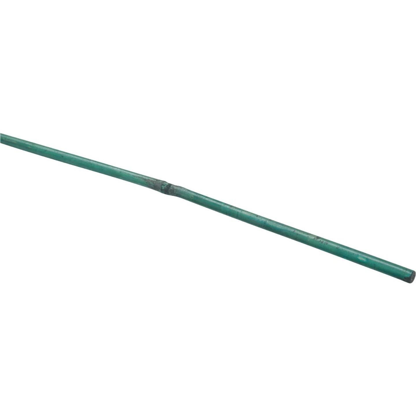 Bond 4 Ft. Green Bamboo Plant Stakes (25-Pack) Image 19